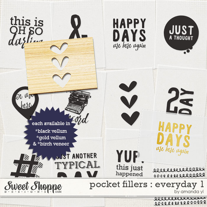 ayi_pocketfillers-everyday1_preview
