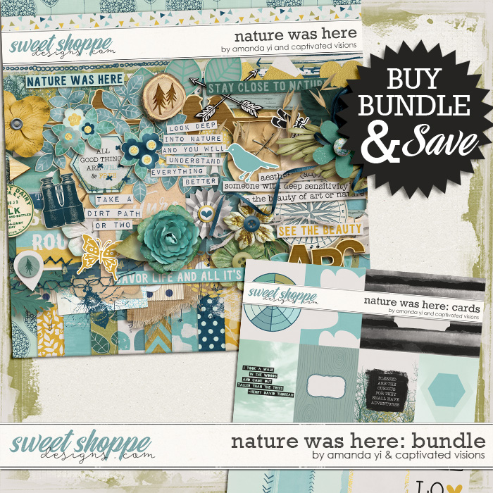 ayi-cvisions-naturewashere-bundle-700
