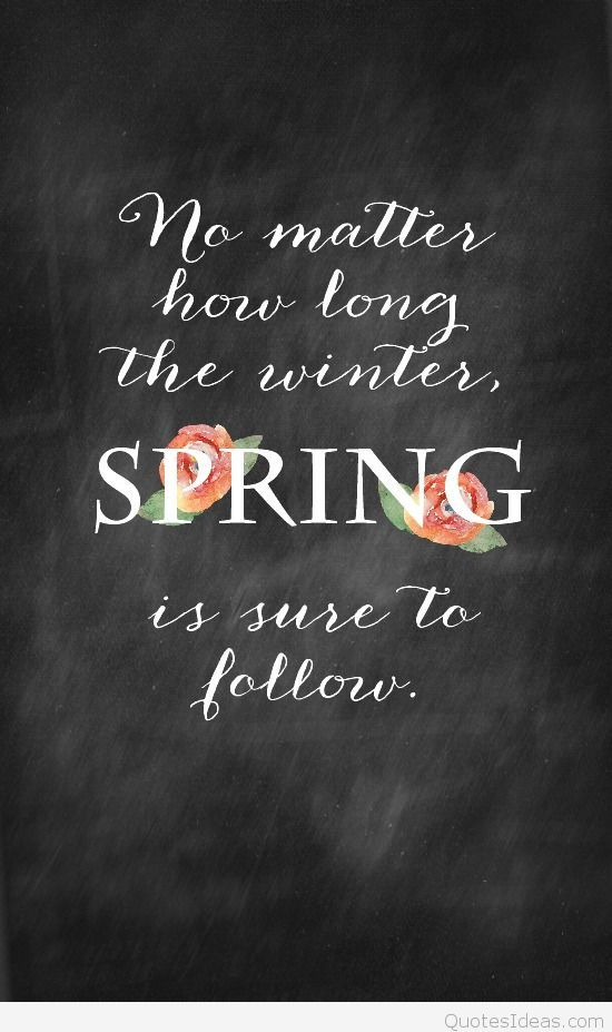 amazing-quote-about-spring-with-flowers