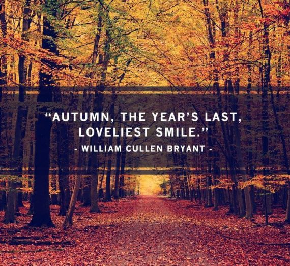 Spring & Autumn Motivation