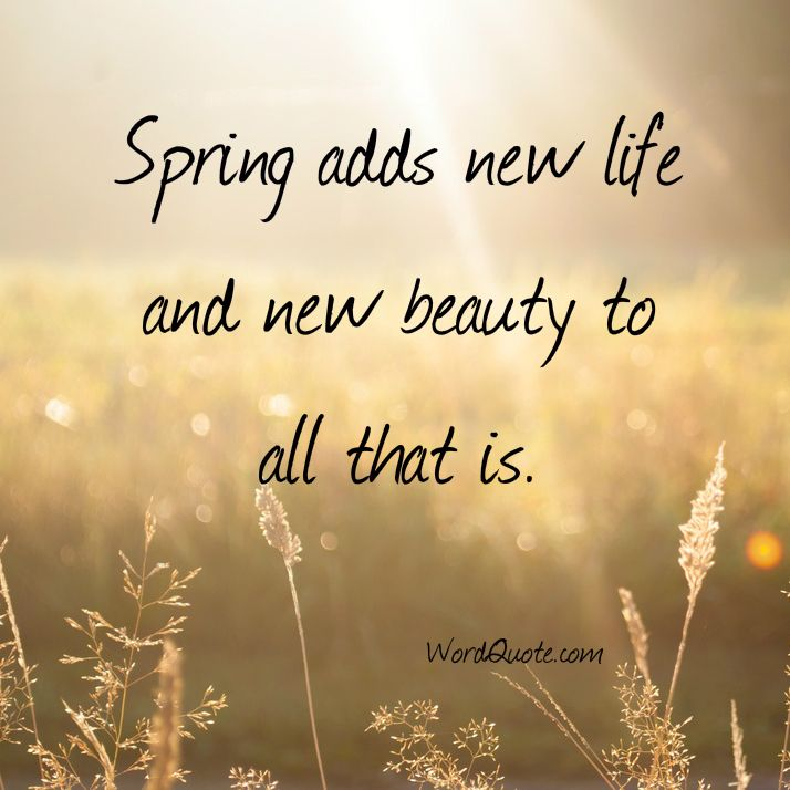 spring-ads-beauty